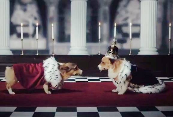 We'd love to make an all-corgi version of @TheCrownNetflix