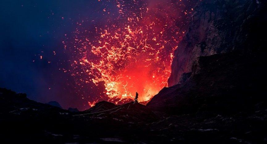 BBC《完美星球》揭開地球角落秘辛!拍攝1113天首度公開珍貴自然畫面