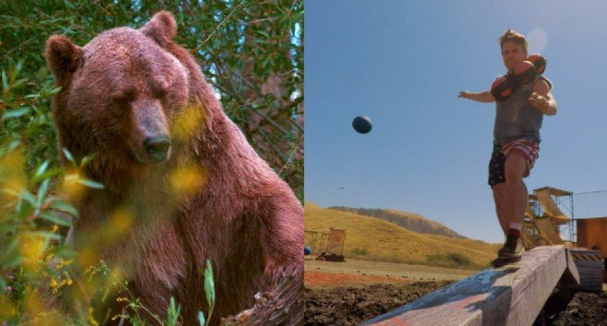 Discovery新年刺激節目出擊!《霹靂躲避球》《人熊競技場》連番上陣