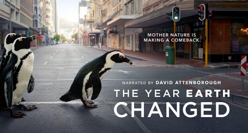 迎接世界地球日!Apple TV+打造生態紀錄片特輯《這一年,地球變得不一樣》