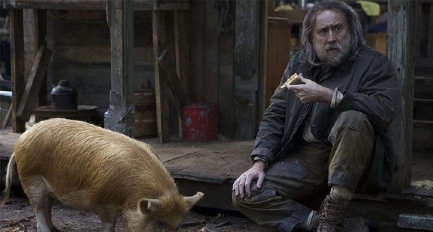 豬版《捍衛任務》?尼可拉斯凱吉《豬殺令》為救小豬奮不顧身獲網友淚讚