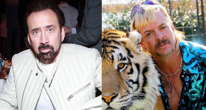 Amazon停止開發《虎王》影集!尼可拉斯凱吉無緣當「異國喬」