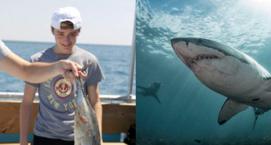 《怪奇物語》諾亞施納普現身百慕達三角洲!特製「魚餌冰沙」誘鯊