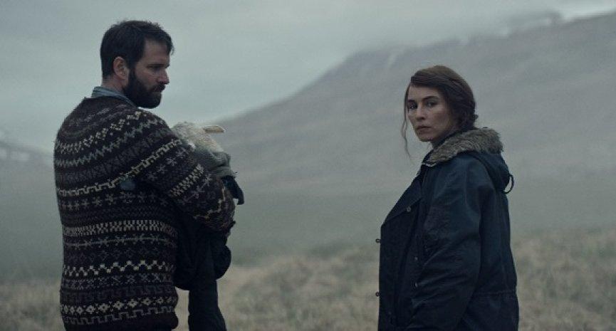 冰島獵奇懼作《羊懼》預告駭人曝光!牧羊犬榮獲「狗狗金棕櫚」評審團大獎